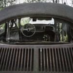 VW femtionia
