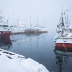 Fredvang hamn